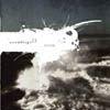 Assemblage 23 - Storm, 2004