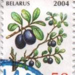 blr03